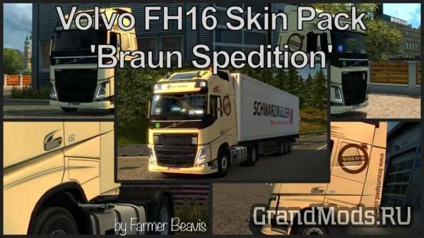 Volvo FH16 Skin Pack Braun Spedition v 1.5 [ETS2]