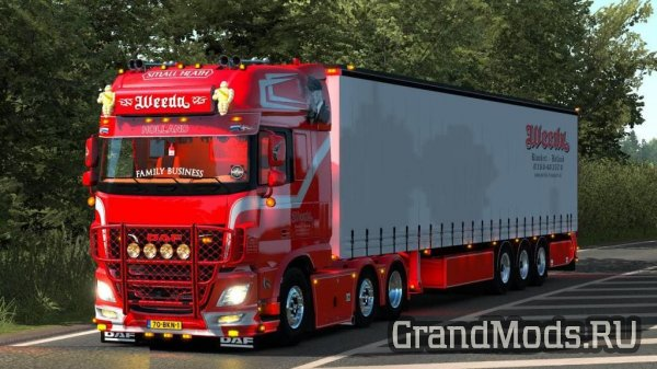 WEEDA Transport DAF [ETS2]